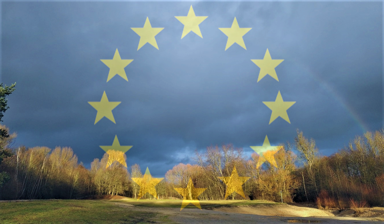 Europe Day 2020 – From a Green Deal to a green future?